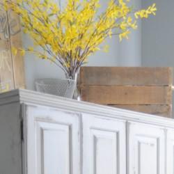 craft cabinet 800x400