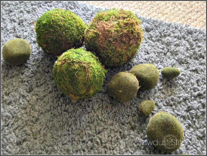 Staging a shelf  Moss Balls ss